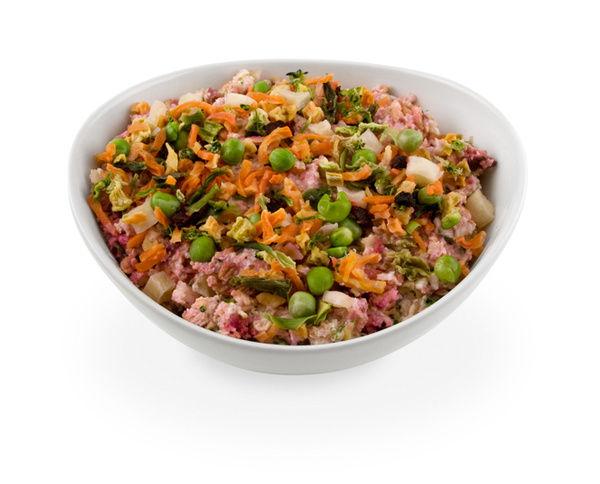 dog-food-organic